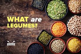 legumes cuisine what are legumes common types anti nutrients soy