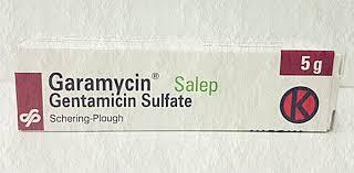 Obat Salep Gentamicin garamycin salep kegunaan dosis efek sing mediskus