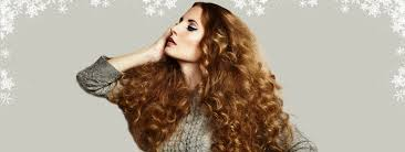 holiday hair salon hairstyles u0026 haircuts in pennsylvania