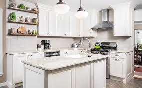 Discount Kitchen Cabinets Houston by Kitchen Cabinets Awesome Cheap Kitchen Cabinets And