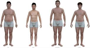 Picture Human Body This Is The Average Man U0027s Body The Atlantic