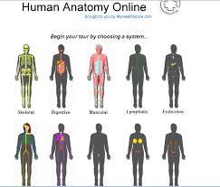 Online Human Body Computer Kiddos Wiki Human Body Unit