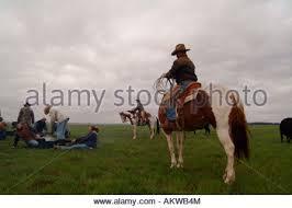 cowboy at logging camp ranch north dakota stock photo royalty