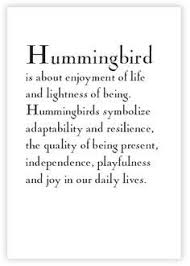 the 25 best hummingbird symbolism ideas on pinterest