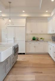 Distressed Wood Kitchen Cabinets Rustic White Kitchen U2013 Fitbooster Me