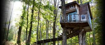 airbnb the tiny fern forest treehouse rv campgrounds u0026 places