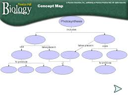 reactions of photosynthesis ppt download