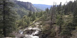 calaveras big trees state park visit california