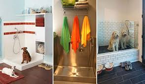 Cool Bathroom Ideas 17 Insanely Cool Bathroom Ideas For Your Doggies Amazing Diy
