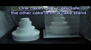 wedding cake delivery wedding cake delivery two possible outcomes