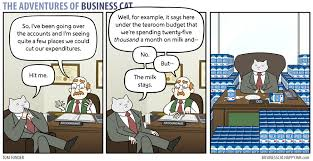 Business Cat Memes - the adventures of a business cat album on imgur
