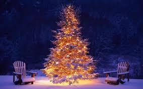 mooie brandende kerstboom buiten in de sneeuw hd kerst wallpaper