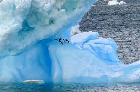 what color is an iceberg