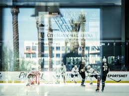graf and sons garage door las vegas city of risk and ice hockey bloomberg