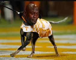Tennessee Vols Memes - memes of the week alabama tennessee lsu florida among topics ripe