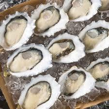 www medium pacific oysters medium tomorrow s fish