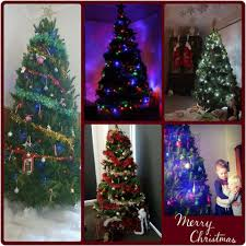 addington park christmas trees home facebook