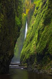 Oregon Waterfalls Map by Hike To Oregon U0027s Breathtaking And Lush Oneonta Gorge Roadtrippers
