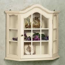 Wall Display Cabinet With Glass Doors Corner Wall Display Cabinet Design With Homely Mounted Glass Doors
