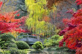 wall murals u0026 posters japanese garden mcp1185en artpainting4you eu