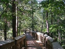 Mississippi nature activities images Chautauqua park crystal springs ms mississippi the treetop jpg