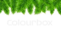 fir tree border vector illustration stock photo colourbox