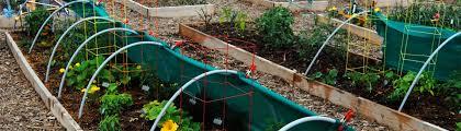 gardening u2013 lightscapes