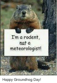 Rodent Meme - i m a rodent not a meteorologist happy groundhog day meme on me me