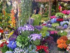 beautiful gardens with pink beautiful multi colored flower