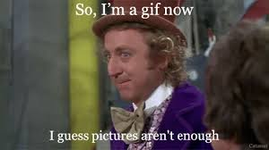 Gene Meme - meme gene wilder gif find download on gifer