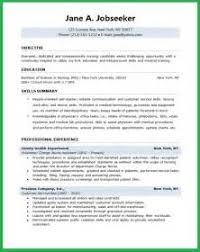 engineering resume summary example of argumentative essay on