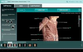 practice anatomy lab pal3 1 0 7 apk download android education