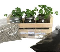 amazon com indoor herb garden kit great for growing an indoor