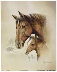 Home Decor Posters Amazon Com 4 Horse Art Prints Mare Pictures Foal Posters Home