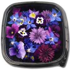 edible blue flowers blue purple edible flowers herbs unlimited