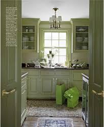 Green Cabinet Kitchen 1131 Best Kitchen Ideas Images On Pinterest Kitchen Ideas Dream