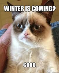 Winter Is Coming Meme - winter is coming cat meme cat planet cat planet