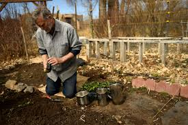 colorado gardening soil how to turn tough soil into gardening gold