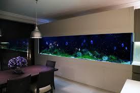 custom aquarium fulham aquarium architecture