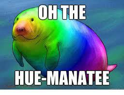 Hue Meme - oh the hue manatee manatee meme on me me