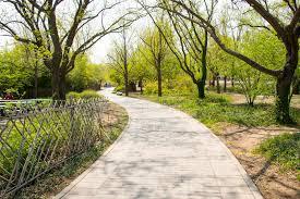 Beijing Botanical Garden Asia Beijing Botanical Garden Scenery The Wooden