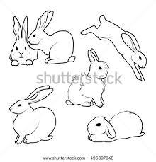 rabbit tattoo stock images royalty free images u0026 vectors
