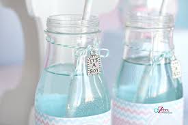 baby shower favors for boy baby shower gender reveal party ideas savvy sassy