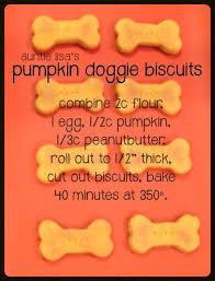 recipe for dog treats pumpkin dog treats pinteres