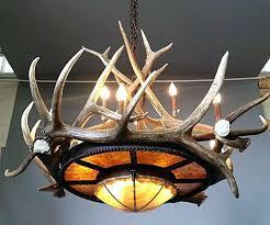 Deer Antler Chandelier Ebay Elk Antler Chandeliers Ek Anter Cheier Deer Antler Chandelier Ebay