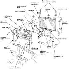 1994 honda accord radiator 1995 honda accord dx the radiator to replace the lower radiator hose