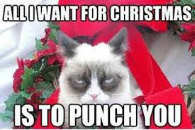 Merry Christmas Cat Meme - funny merry christmas jokes wishes christmas images and pictures