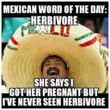 Mexican Meme - mexican meme tags pinhumour