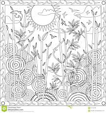 coloring book adults square format bamboo japanese design