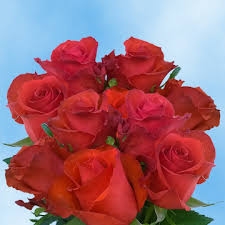 Global Roses 100 Red Roses For Delivery Colombian Roses Farm Direct Delivery